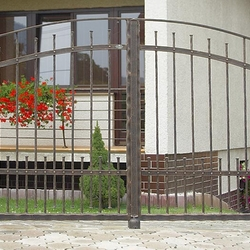 A wrought iron fence - sheer beauty